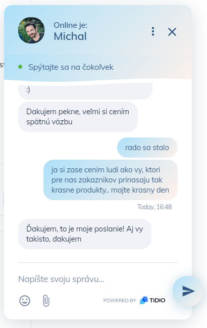 Michal mystery online chat