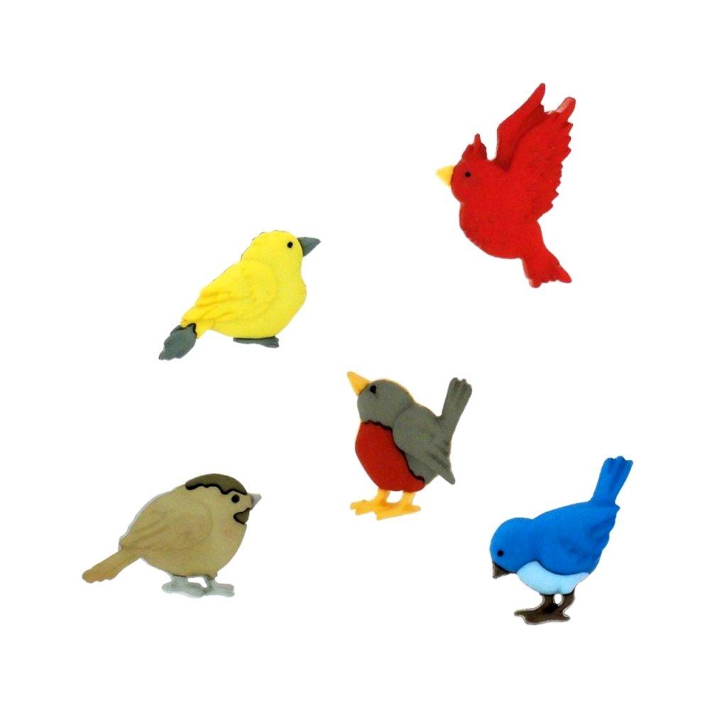 ptaci all