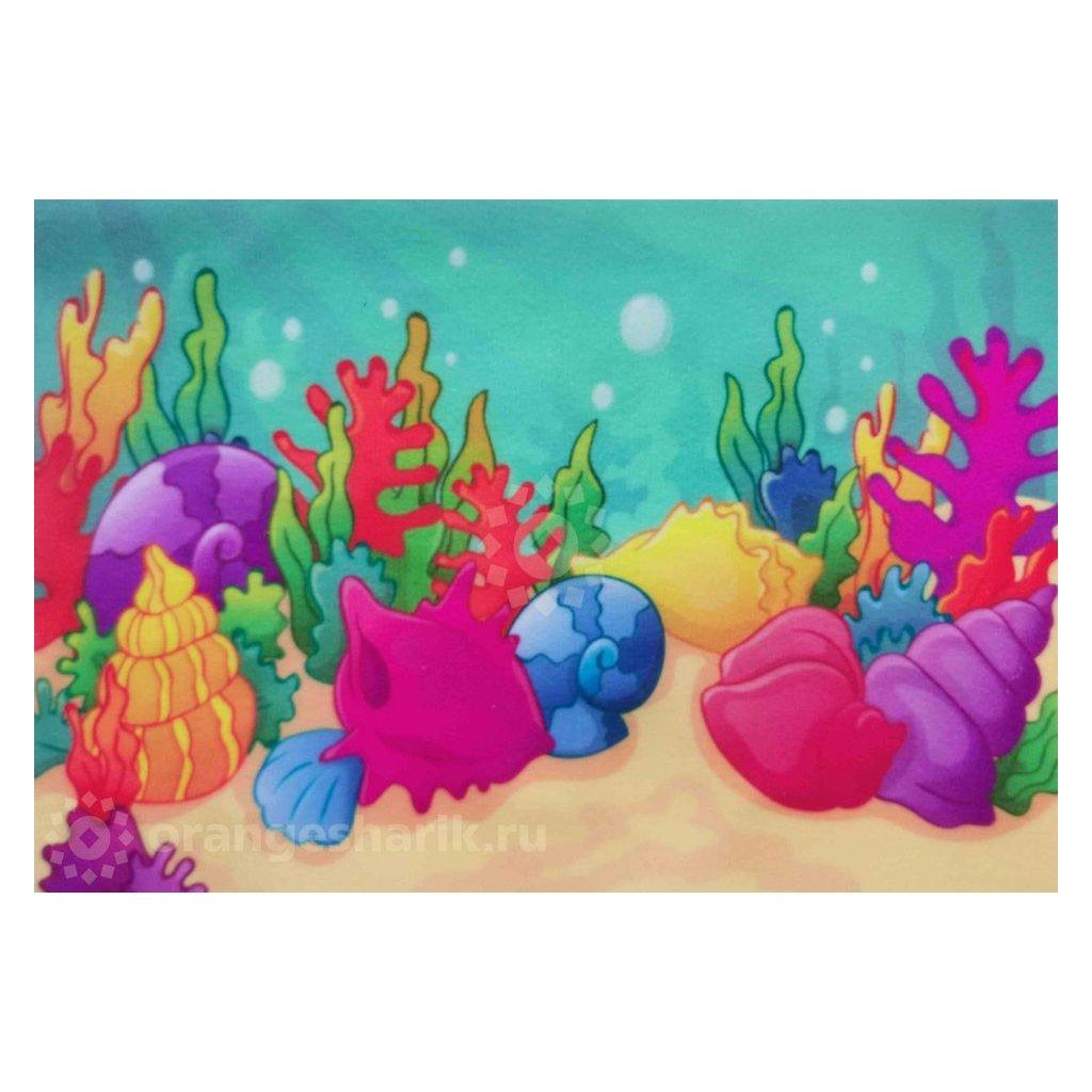 Mechova latka podmorsky svet