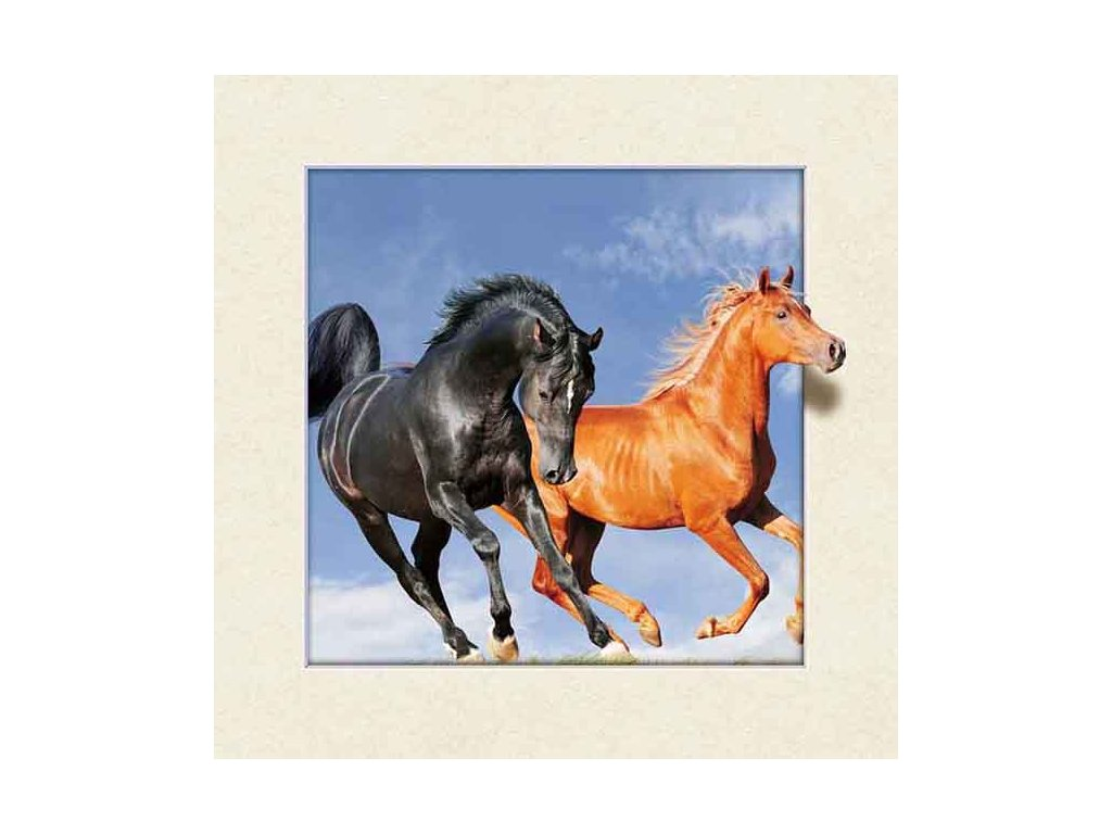 Two Horses Large Mapcards Net