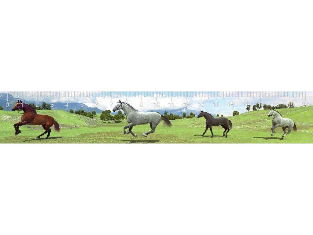 MCZ11 GALLOPING HORSES