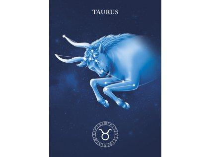 MCE02 TAURUS