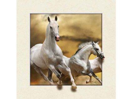 MC508 WHITE HORSES