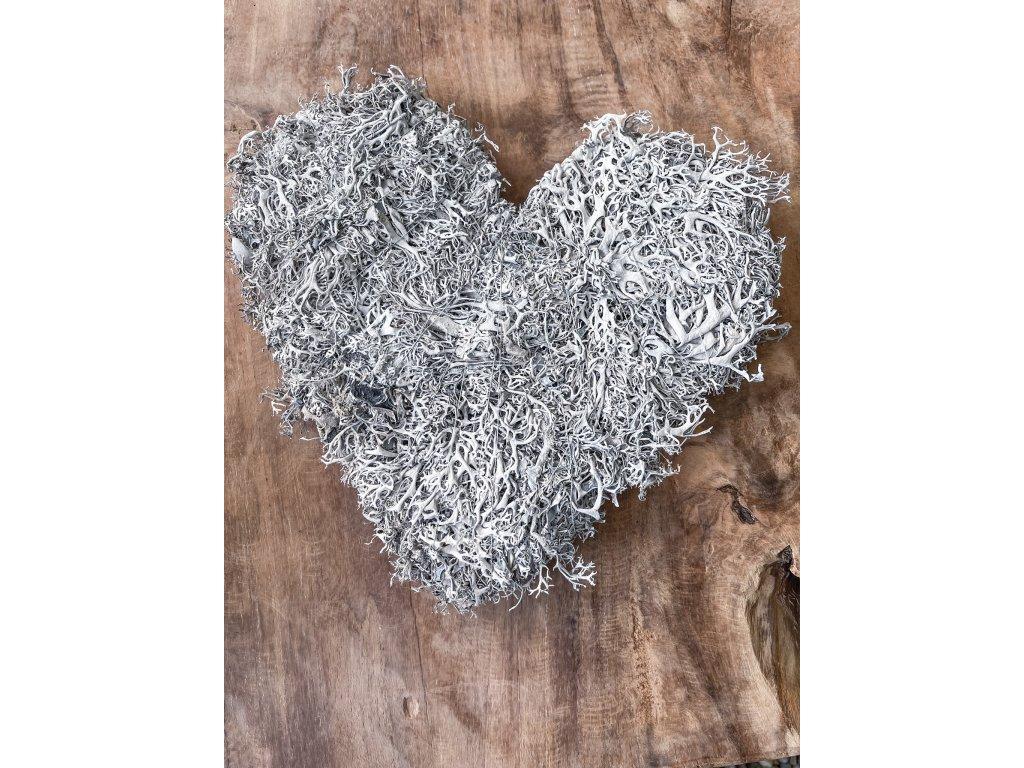 Lišejníkové srdce