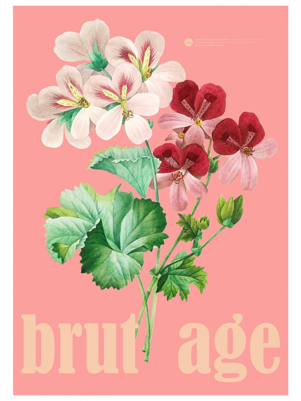 marian for president plakát poster 50x70 brutage verze 2