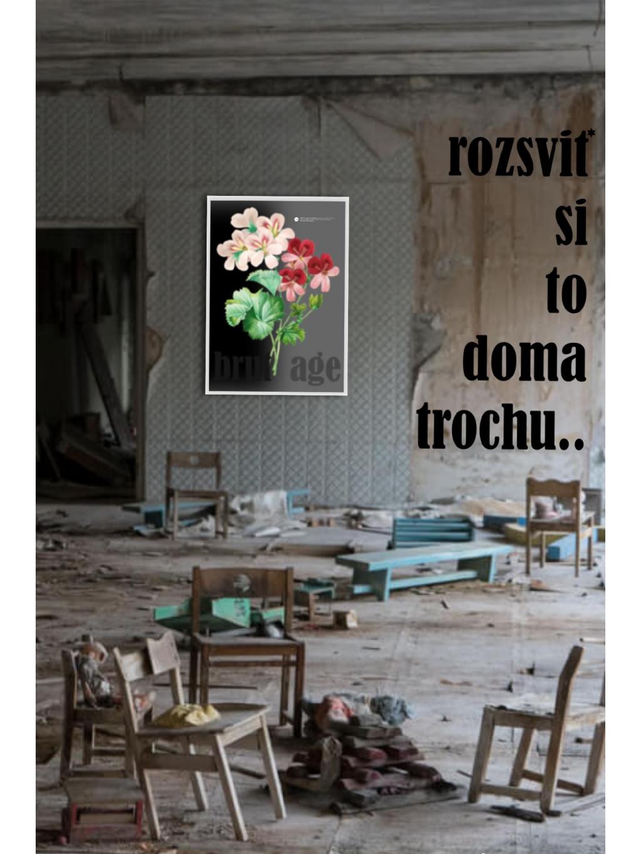 marian for president plakát poster 50x70 brutage