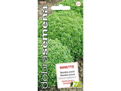 Dobrá semena Bazalka pravá - Minette drobnolistá 0,6g
