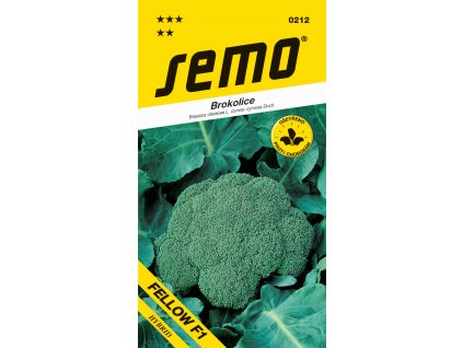 Brokolice - Steel (SV3277BL) F1 (typ Fellow F1) 30s celoroční