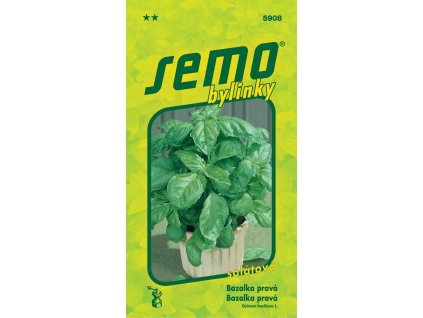 Bazalka pravá - Lettuce Leaf (salátová) 1g