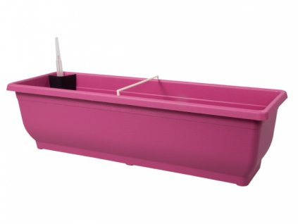 Truhlík samozavlažovací TORENIE plastový fialovo růžový 60cm