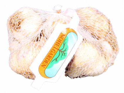 Česnek sadbový Messidrome white 500g
