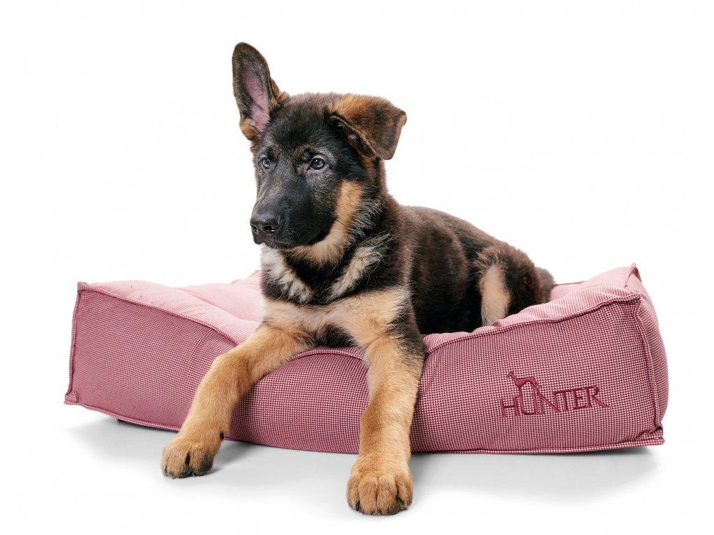 Matrace pro psa Hunter Lancaster - červená