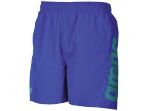 Fundamentals Logo Boxer Blue green