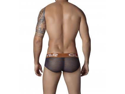 533311 Trendy Latin Brief1
