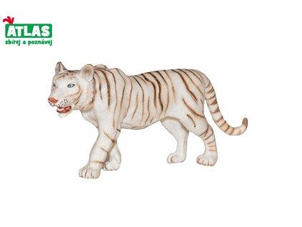tygr bíý