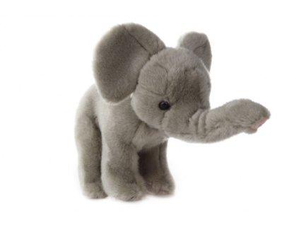 Plyš Slon zvukový 26 cm