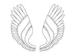 krůta křídlo