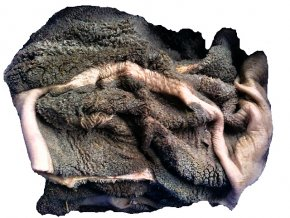 Hovězí neprané dršťky - kusové 1 kg