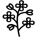 Hořčice