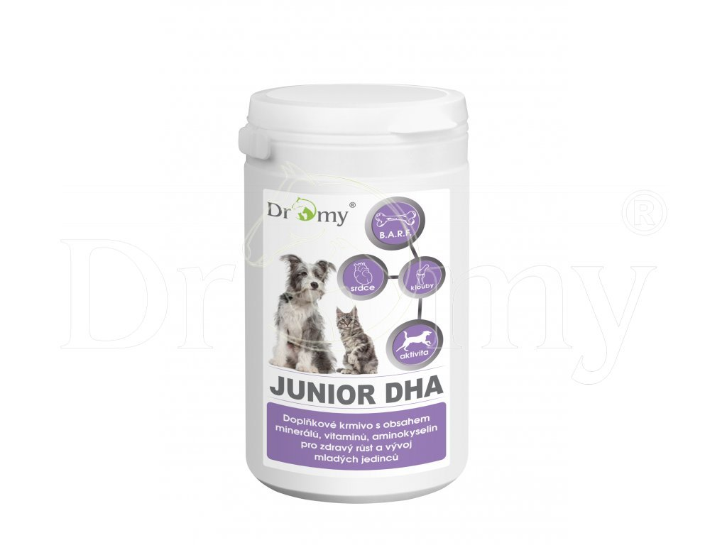 junior dha