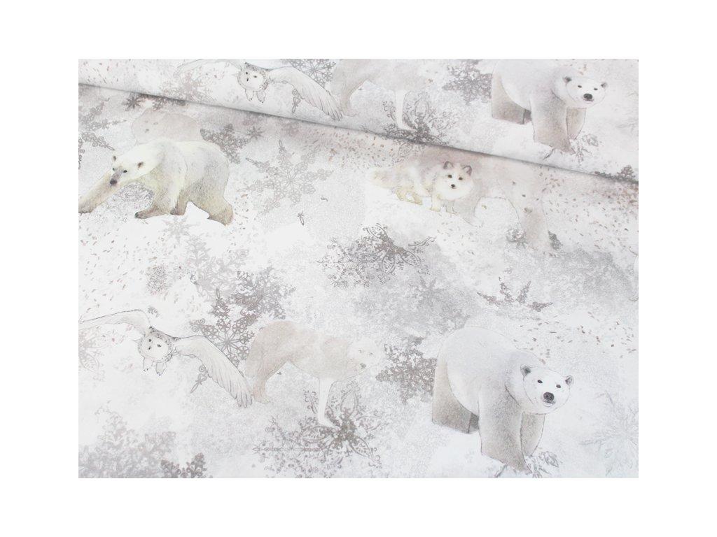 matas van latka medvedi