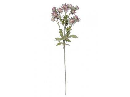matas umela kveti uka043