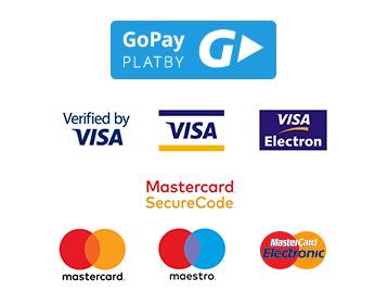 Go Pay platební metody