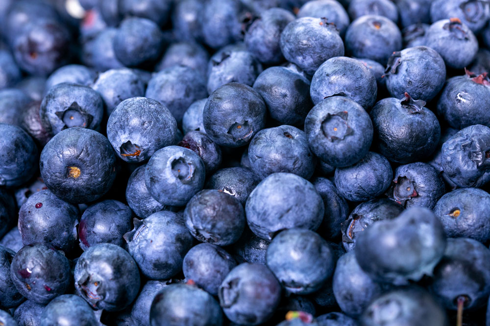 close-up-photo-of-blueberries-2539170