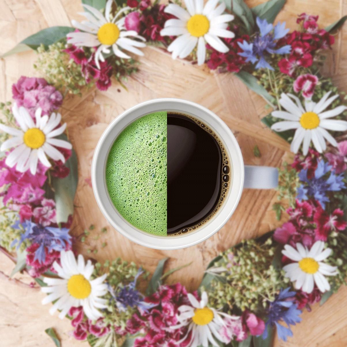 Matcha Tea a káva