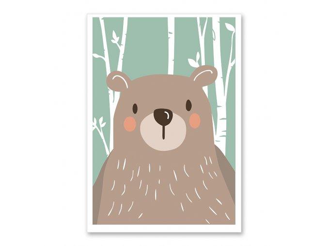 Medved zelenepozadi