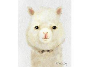 obraz cute lama