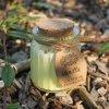 Sojová vonná svíčka -Vanilka