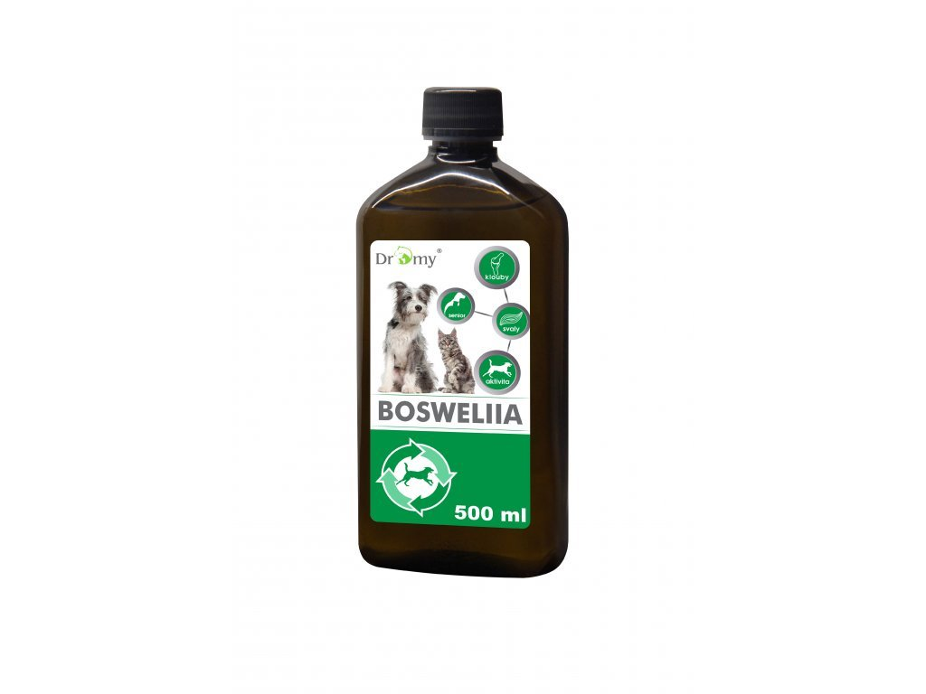 Dromy Boswellia liquid 500 ml