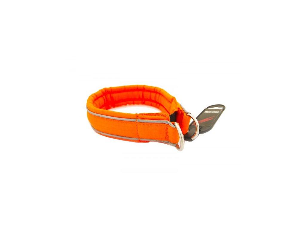 safe collar 2 600x391
