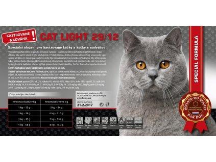 cat light