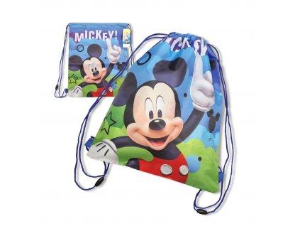 Vak Mickey Mouse