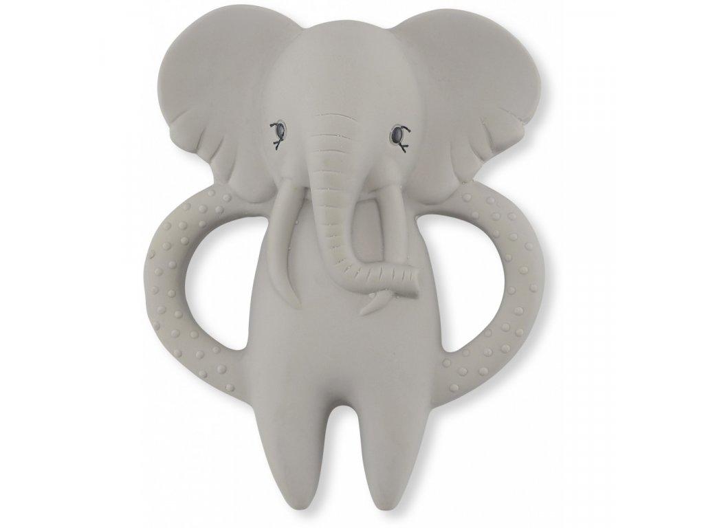 teeth elephant
