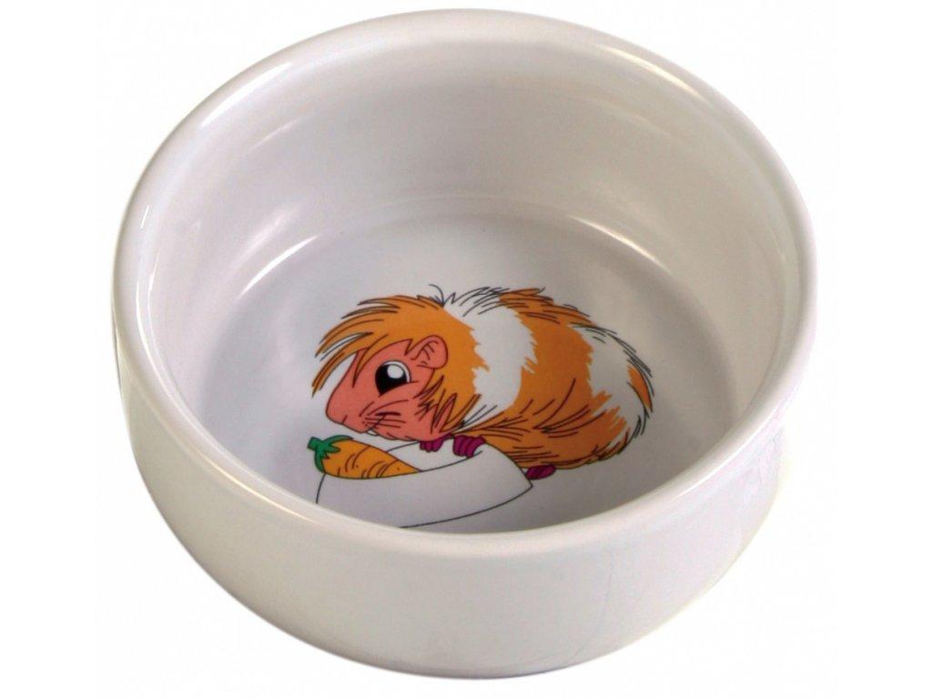 Keramická miska pro morče s obrázkem 250 ml/11 cm