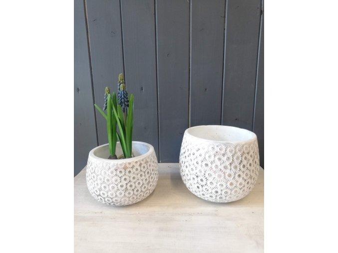 Cementové květináče kopretinek