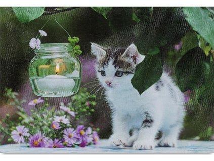 Obraz, dekorace se stojánkem, svíticí - 1 ks LED světla.