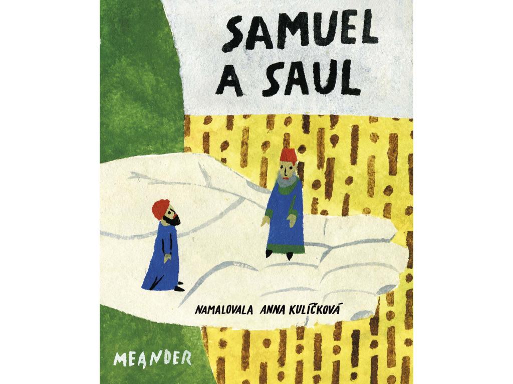 13 Samuel Saul