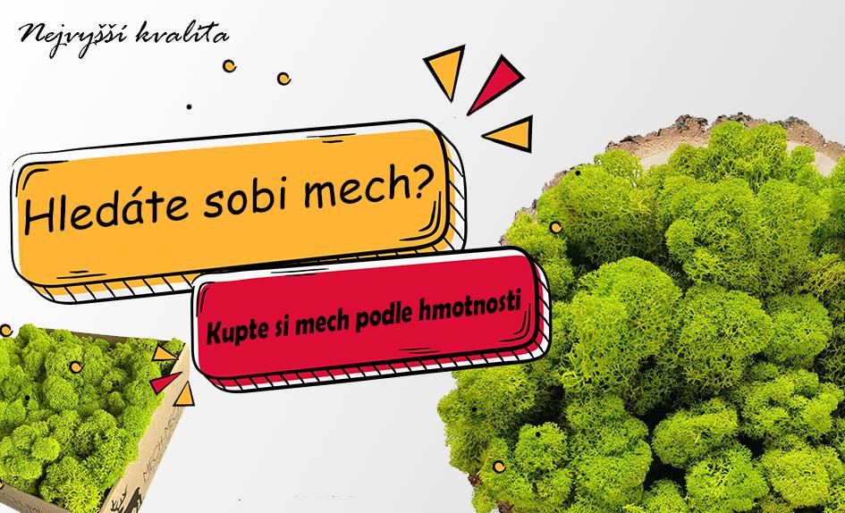 Sobi Mech Finsky Premium