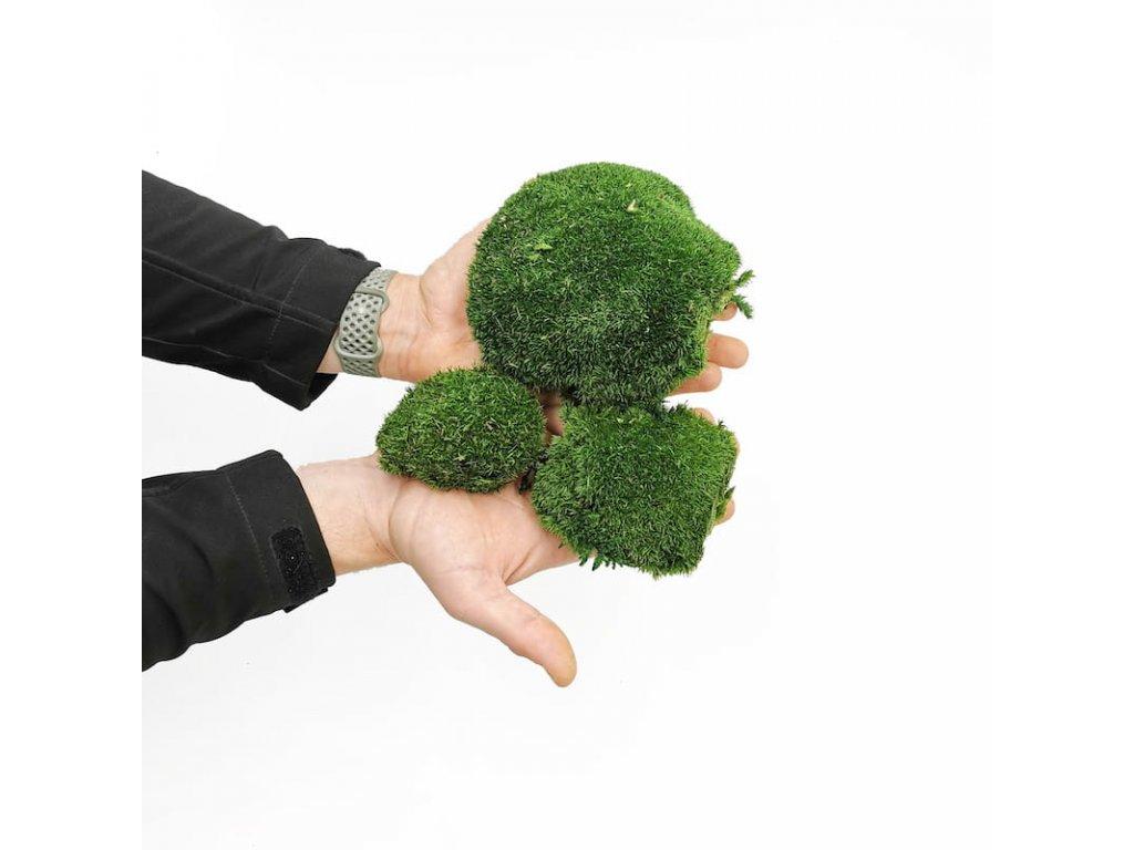Mech Poduszkowy Cieno Zielony Szwecja 1
