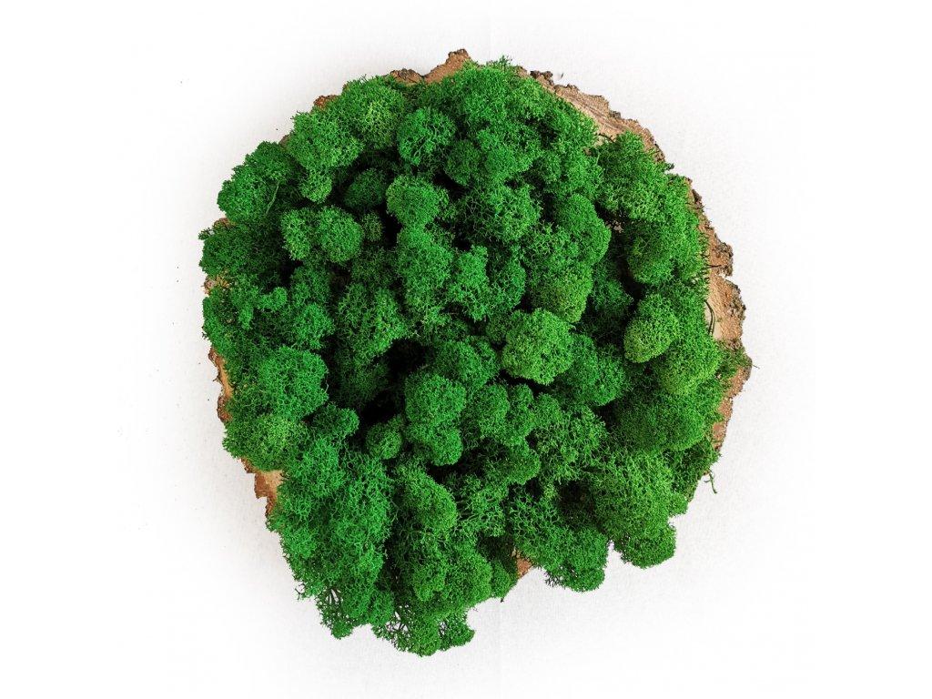 Apple green okladka