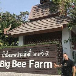 Včelárenie v THAJSKU