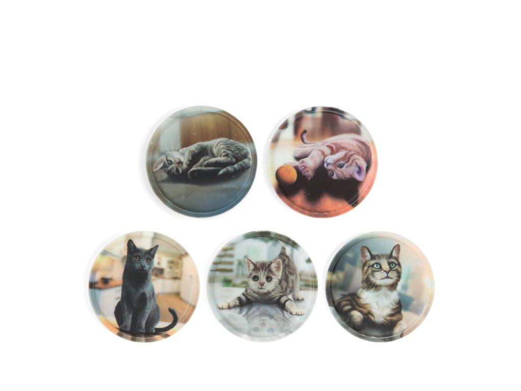 Mid JPG ERG KLE 003 006 kočičky