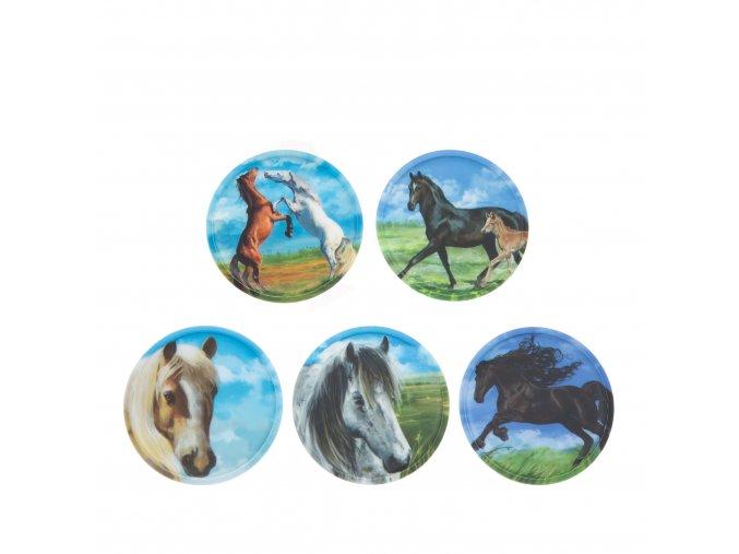 ERG KLE 002 012 Kletties koně