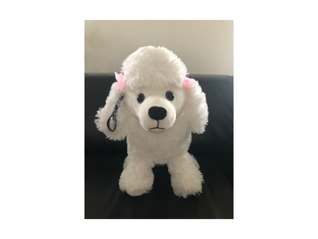 OUŠKO pes