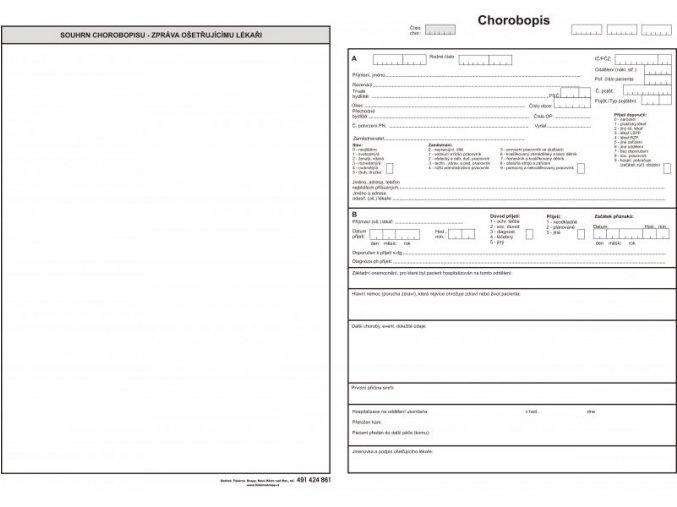 Chorobopis