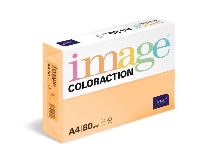 PRSQXL IMAGE COLORACTION 500 80 A4 SAVANA 06082014 00